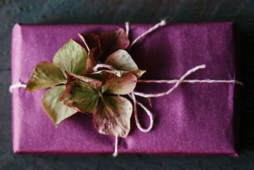 هدیه خاص برای خانم ها - بوم رنگ آمیزی موزیکال رنگانا